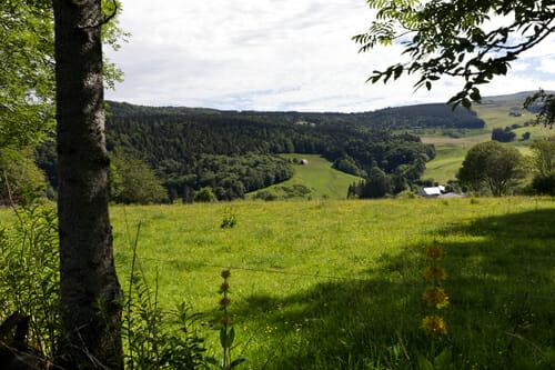 Magnifique Auvergne 3 - Randonnée Puy de Dôme