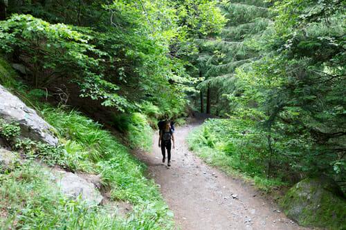 Sentier de la Grande Cascade - Mont Doré