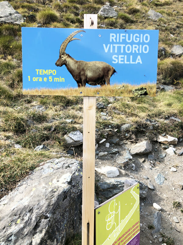 Direction Refugio Vittorio Sella _ Voyage photo animalière _ Salva Fauna Tours
