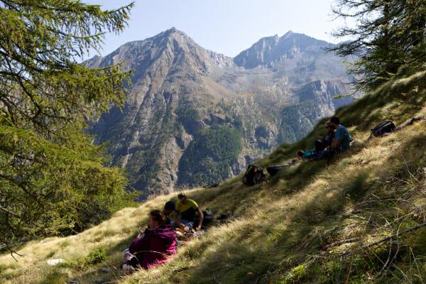 Pique-nique _ Parc Gran Paradiso _ Salva Fauna Tours