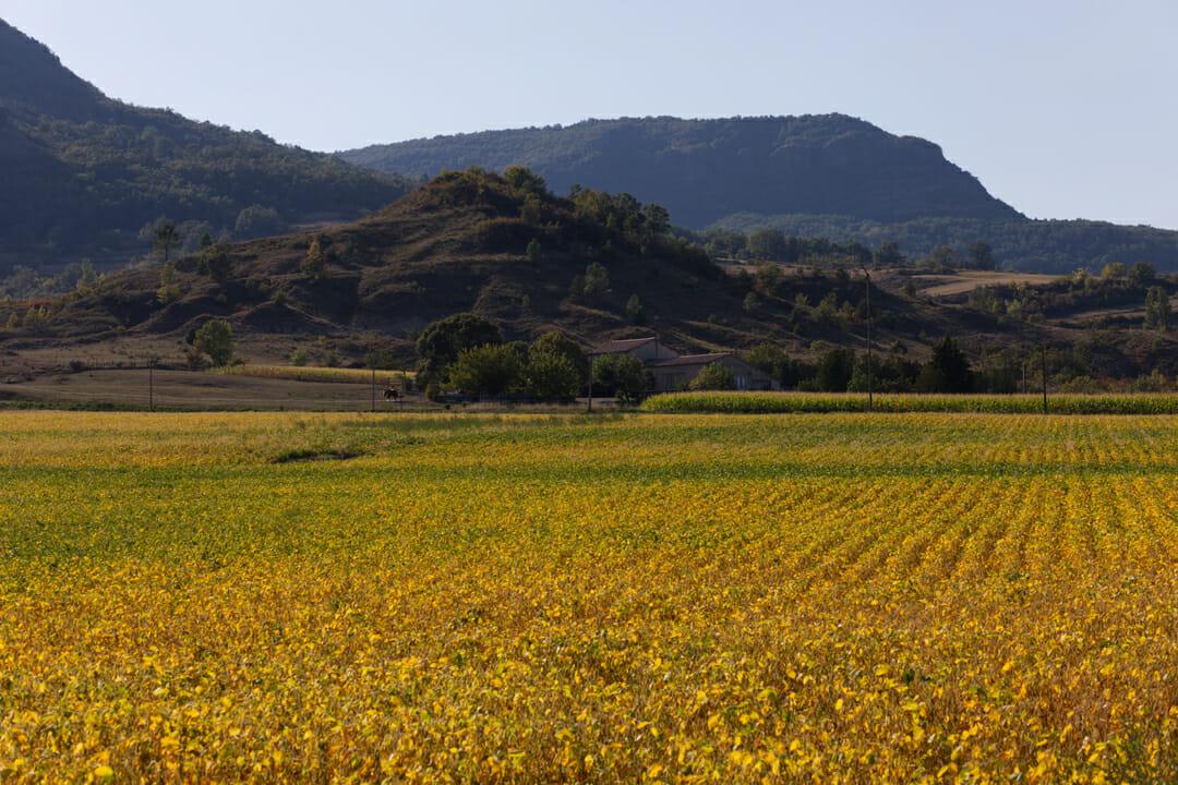 Paysage sur la voie douce de la Payre - Ardèche