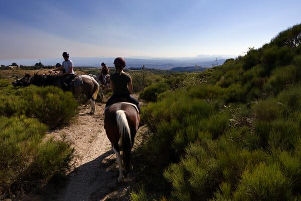 Que faire en Ardèche - Cheval avec Equi'Dena