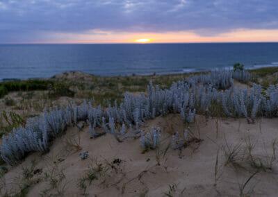 Coucher de soleil sur la plage d'Arna - Naturisme